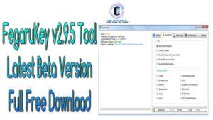 FegaruKey v2.9.5 Tool Latest Beta Version Full Free Download